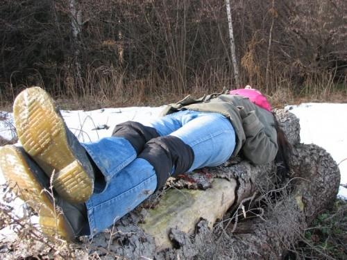 siesta na Brezovom polju