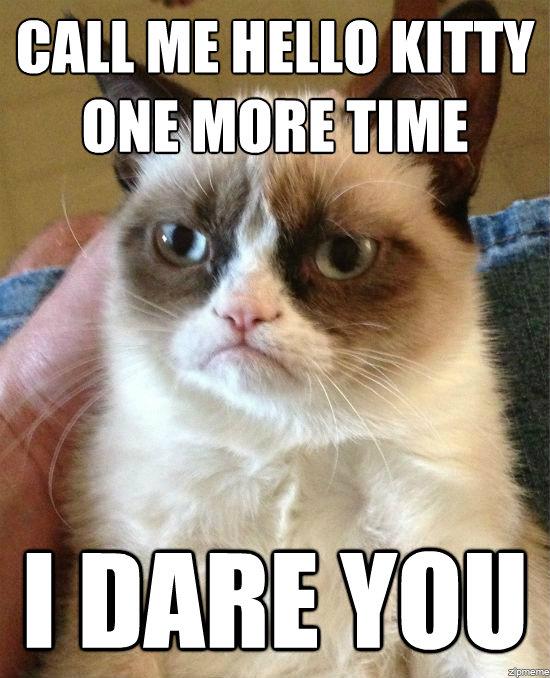 grumpy-cat-meme-i-dare-you